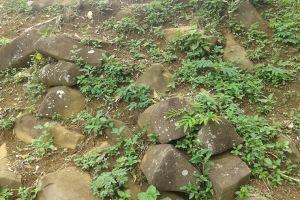 Pondasi Situs Gunung Padang